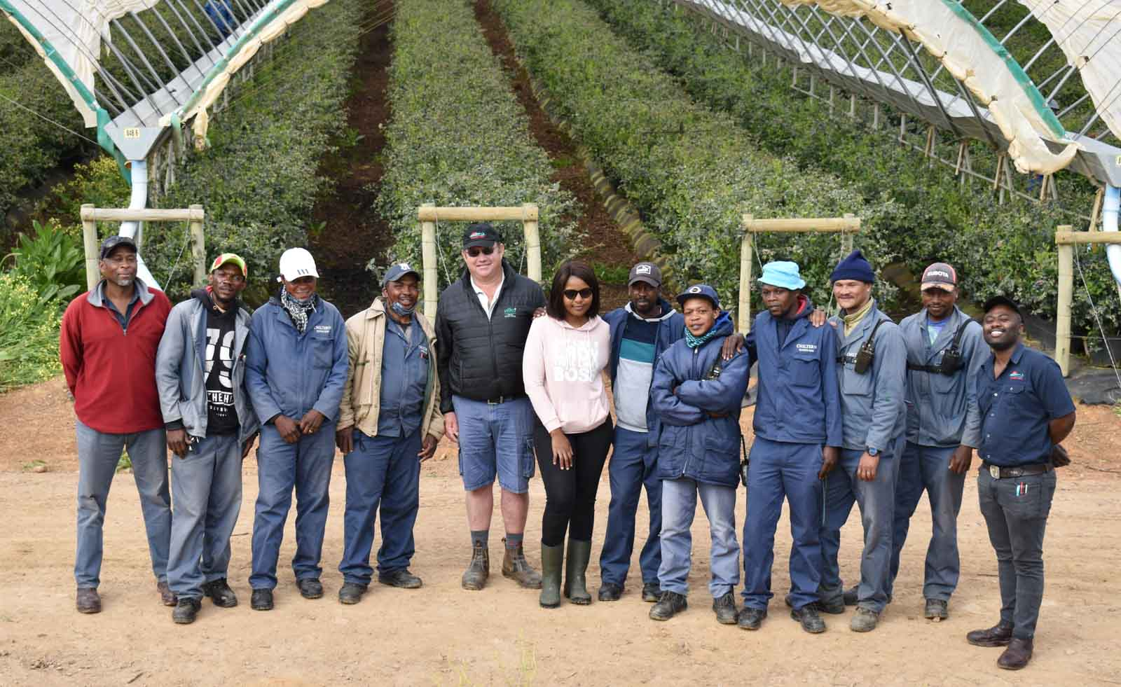 A clean sweep for Chiltern Blueberry Department
